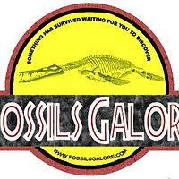 Fossils Galore Centre Logo