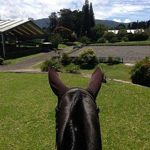 escuela de equitacion El Cortijo