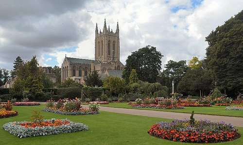 The Cathedrtal from the Abbey gardens
