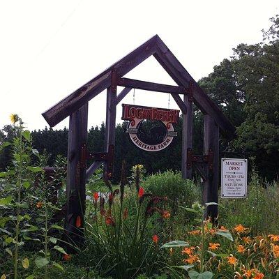 Loganberry Heritage Farm Entrance