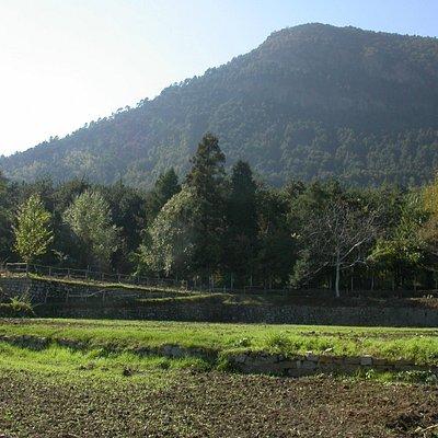 Veduta del Monte san Giorgio dalla località Vivaio, presso i Tiri.
