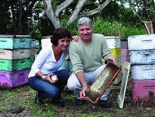 Honey tasting and beekeeping museum