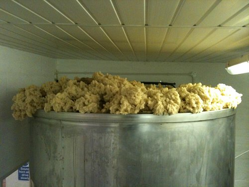 Fermentation  of Stone the Crows