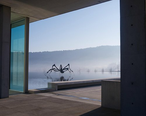 Tadao Ando, Art Centre. Louise Bourgeous, Crouching Spider