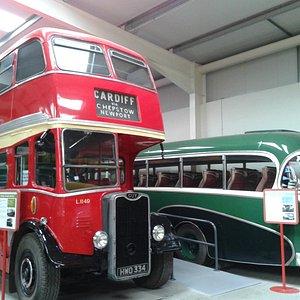 Gleaming buses