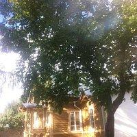 летнее ателье Адамсона - маленький домик и сад с лежаком