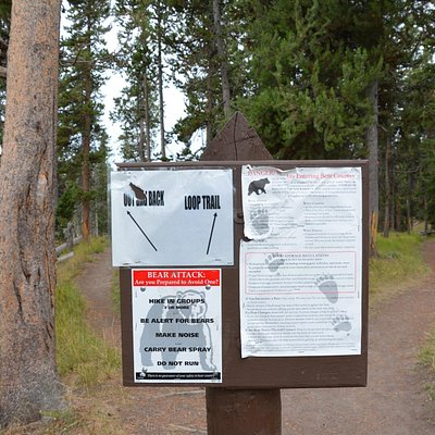Bear warning at trailhead