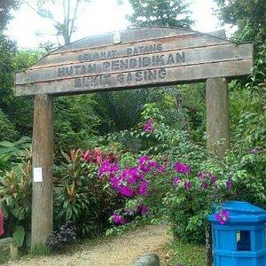 Bukit Gasing, Petaling Jaya