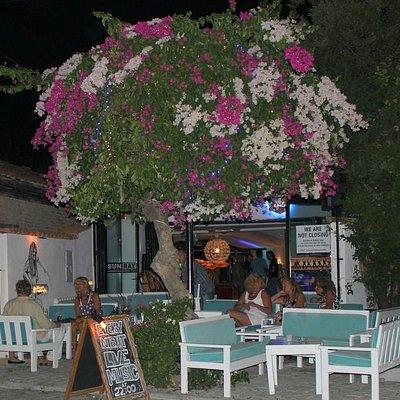 Sunray Bar Dalyan