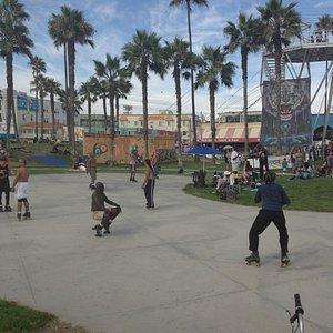 Skate Park in Venice
