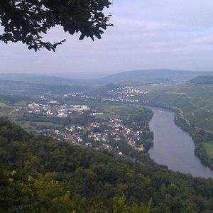 Mosel Valley above Bernkastel (toward Piesport)