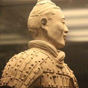 Handsome Terracotta Warrior
