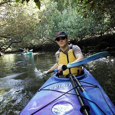 Dolphin Sanctuary & Ships Graveyard Kayak tours and hire