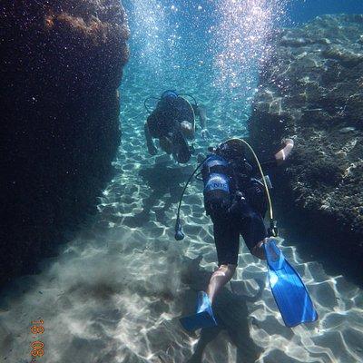 underwater kea