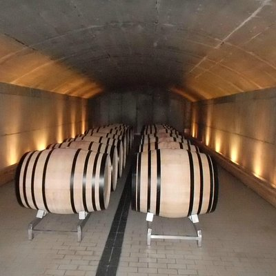 Enjoy wineries from Madrid! We drive!