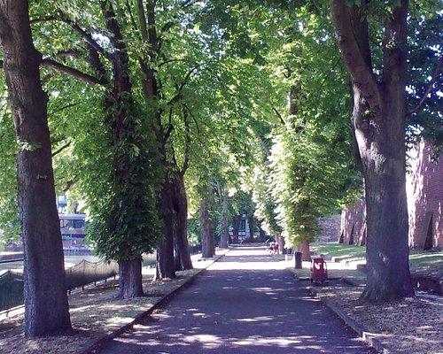 Chestnut Walk