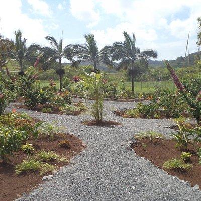 Le jardin des 5 Sens Rodrigues