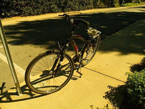 My Fuji bike I rented. I want to buy a used one.