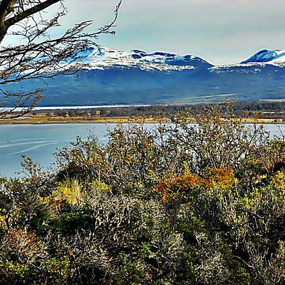vita del monte Tarn el cual fue explorado por Charles Darwin