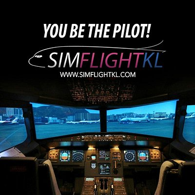 You be the pilot!