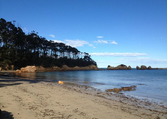 Where the Forest meets the Sea - a perfect place for rockpool exploration, swimming & photograph