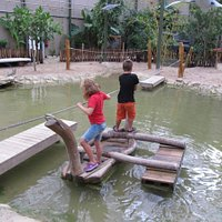 a 'ferry' in kids jungle