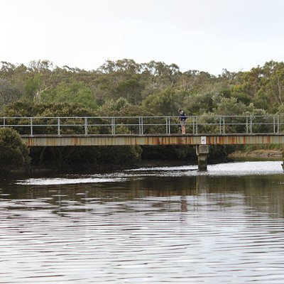 Screw Creek footbridge
