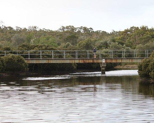 Screw Creek footbridge