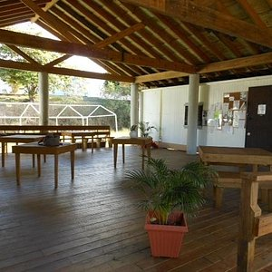 Library deck