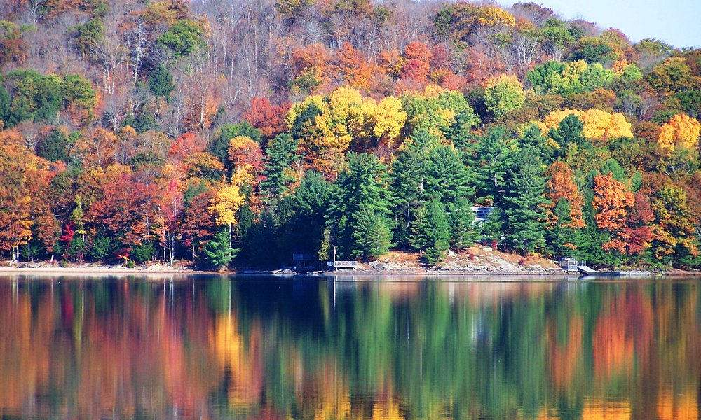 Autumn on 12 Mile Lake