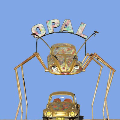 Opal Bug for the best Opals!