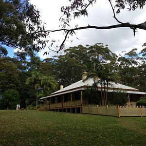 Beautiful grounds, and maybe a koala in a tree!