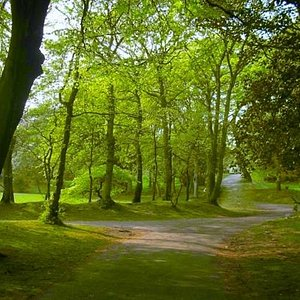 Lovely little pathways at Hesketh Park