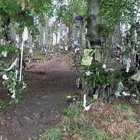 Clootie Well - cloth on the trees