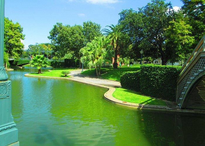 Serene pond