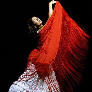 Carmen - Ballet Flamenco de Madrid