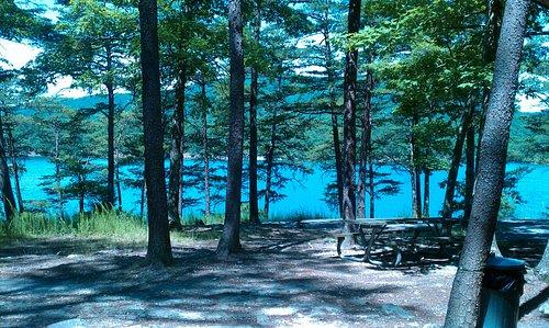 carvins cove picnic area