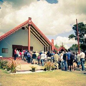 Rotorua Day Tour