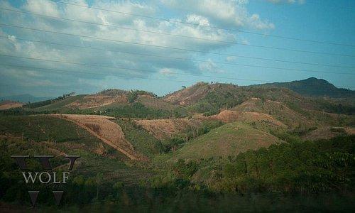 halfway between phitsanulok and phetchabun during dry season
