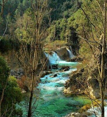 Río Borosa II