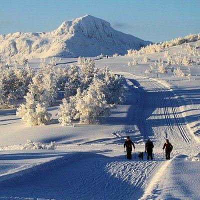 Bitihorn in winter