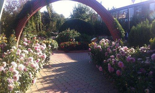 Renk ve koku bahçeşi