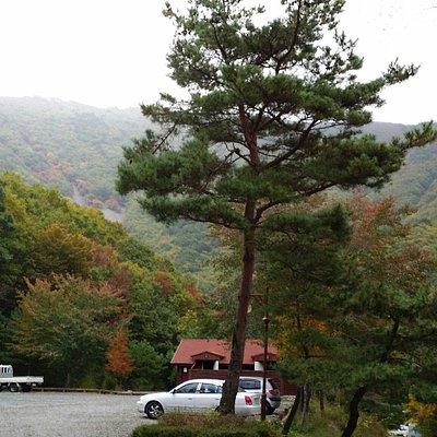운문산자연휴양림의 가을정취가 너무아름 다워요