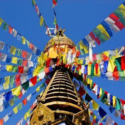 Monkey temple - Nepal