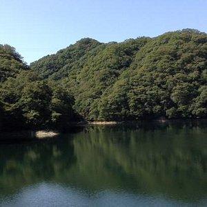 lake view @ Hiking