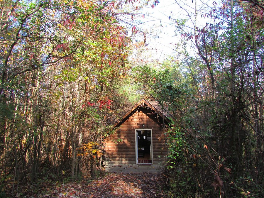 CASSADY'S HILLTOP CABIN - Campground Reviews (Ohio/Logan ...