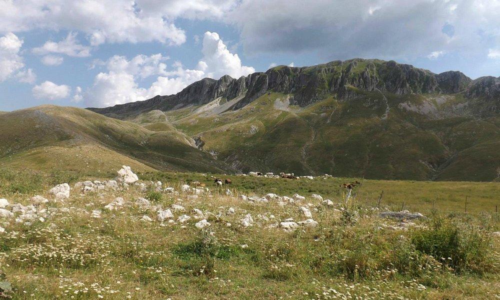 Campania,Italia