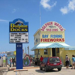 Dolphin Docks.. lots of fun