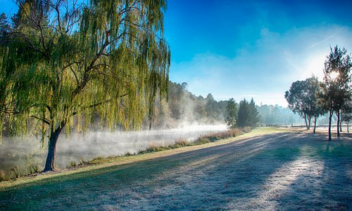 Visit Yass Valley Morning Mist Yass