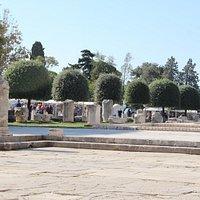 forum romano, zadar